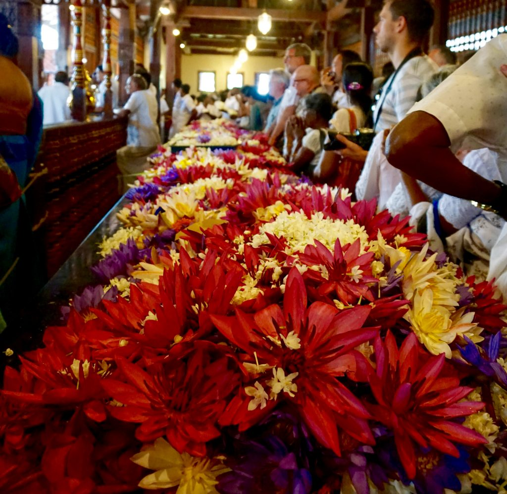 Flowers for the ceremony in Temple of the Tooth.