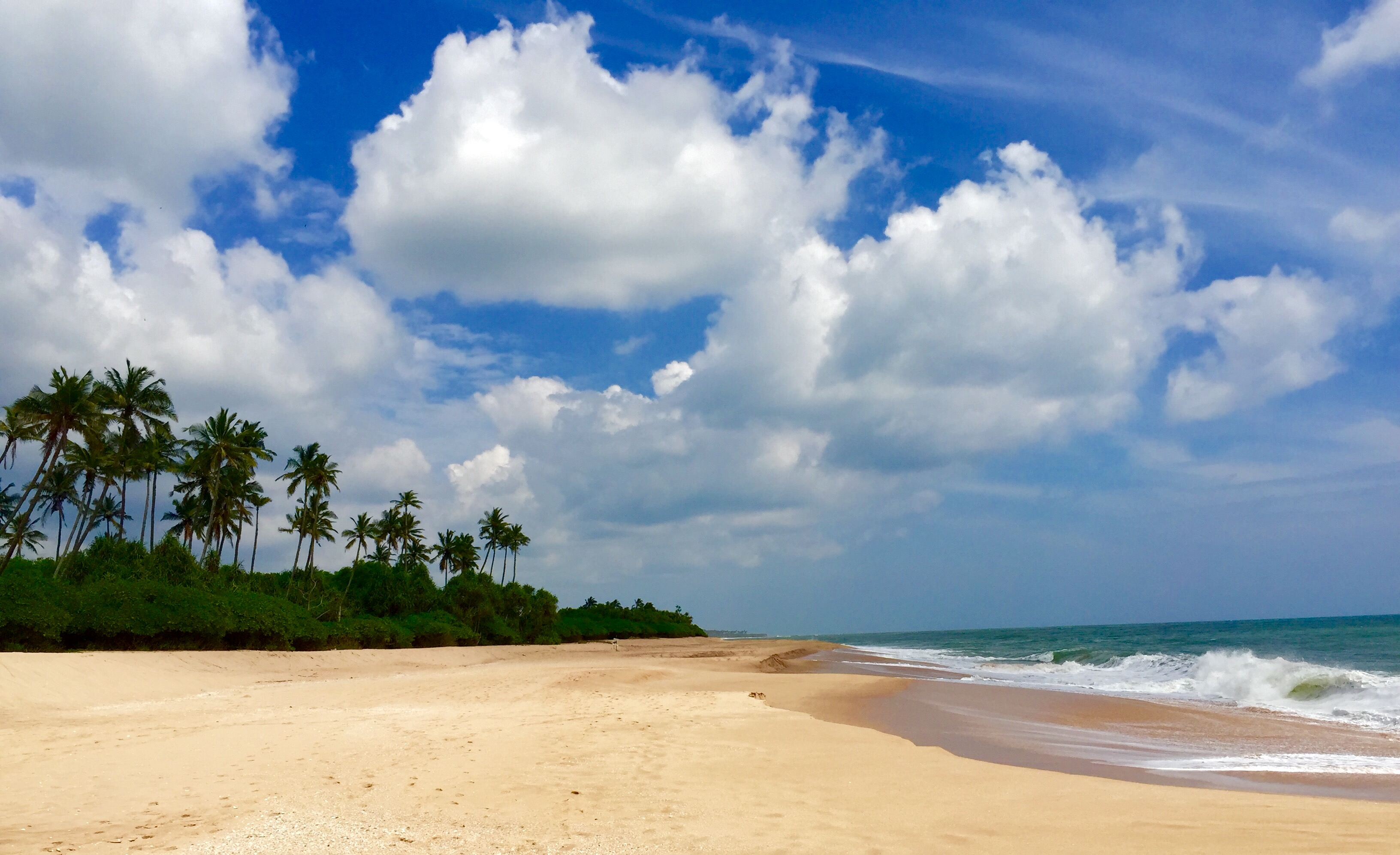 8 Of The Top Places To Visit In Beautiful Sri Lanka Battered Backpacks